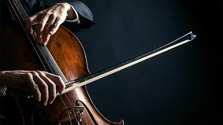 PURA MUSICA DE CAMBRA